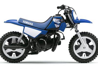Motorsport-Pfiffner_2015-Yamaha-PW50-EU-Racing-Blue-Action-001 (5)