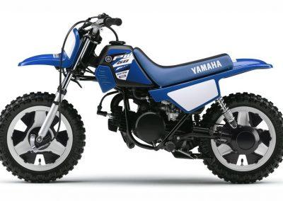 Motorsport-Pfiffner_2015-Yamaha-PW50-EU-Racing-Blue-Action-001 (6)