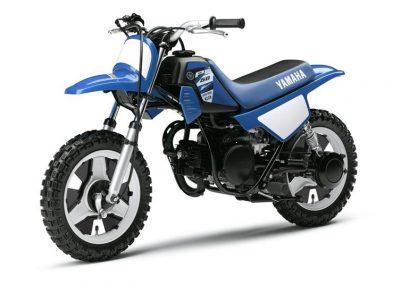 Motorsport-Pfiffner_2015-Yamaha-PW50-EU-Racing-Blue-Action-001 (7)