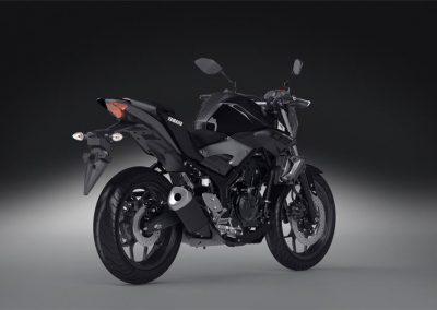 Motorsport-Pfiffner_2016-Yamaha-MT320-EU-Midnight-Black-Action-001 (18)