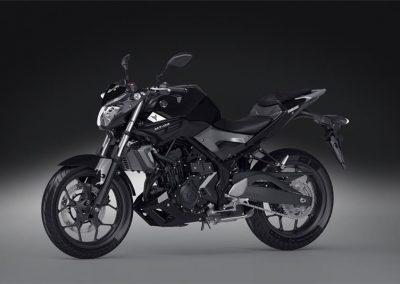 Motorsport-Pfiffner_2016-Yamaha-MT320-EU-Midnight-Black-Action-001 (34)