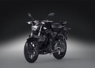 Motorsport-Pfiffner_2016-Yamaha-MT320-EU-Midnight-Black-Action-001 (37)