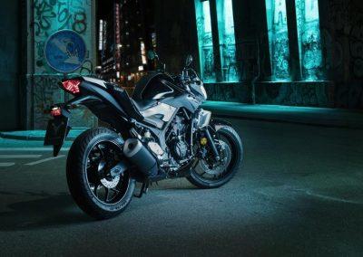 Motorsport-Pfiffner_2016-Yamaha-MT320-EU-Midnight-Black-Action-001 (8)