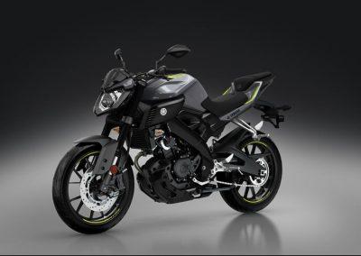 Motorsport-Pfiffner_2017-Yamaha-MT-125-EU-Night-Fluo-Action-001 (37)