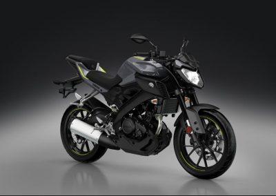 Motorsport-Pfiffner_2017-Yamaha-MT-125-EU-Night-Fluo-Action-001 (47)
