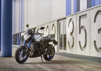 Motorsport-Pfiffner_2015-Yamaha-FZ8-EU-Race-Blu-Action-001 (7)