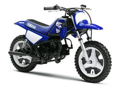 Motorsport-Pfiffner_2015-Yamaha-PW50-EU-Racing-Blue-Action-001 (3)