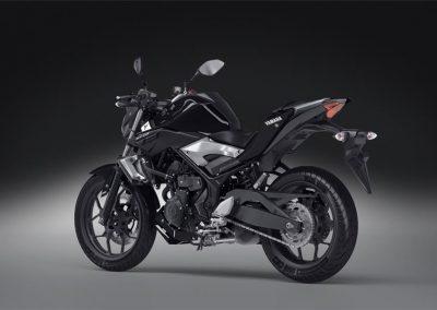 Motorsport-Pfiffner_2016-Yamaha-MT320-EU-Midnight-Black-Action-001 (27)