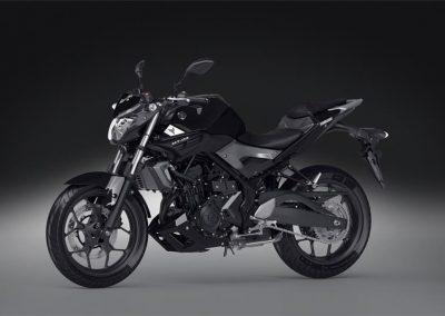 Motorsport-Pfiffner_2016-Yamaha-MT320-EU-Midnight-Black-Action-001 (34)