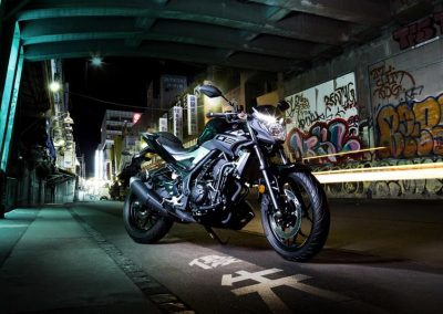 Motorsport-Pfiffner_2016-Yamaha-MT320-EU-Midnight-Black-Action-001 (7)