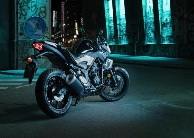 Motorsport-Pfiffner_2016-Yamaha-MT320-EU-Midnight-Black-Action-001 (8)